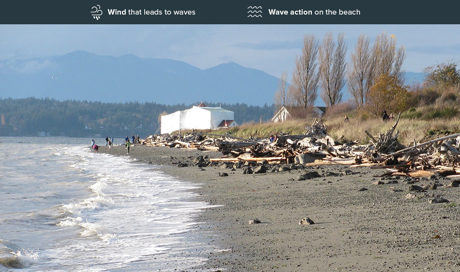 Beach showing medium erosion risk